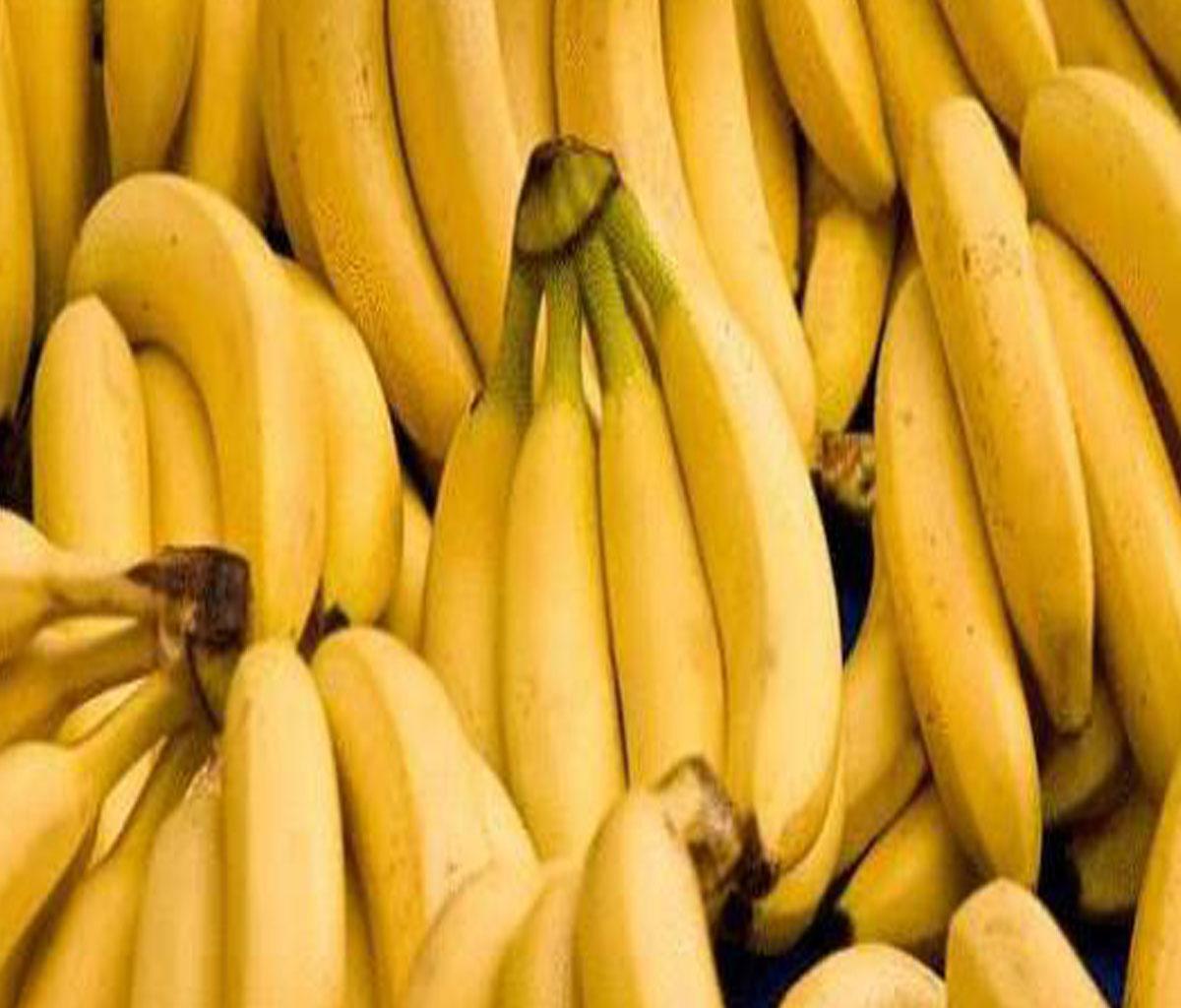 تفسير حلم تناول الموز للحامل في المنام
