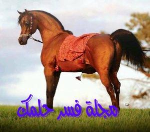حلم الحصان البني للمرأة المتزوجة والعزباء في المنام لابن سيرين