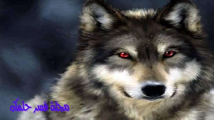 تفسير رؤية ملاحقة الذئب في المنام