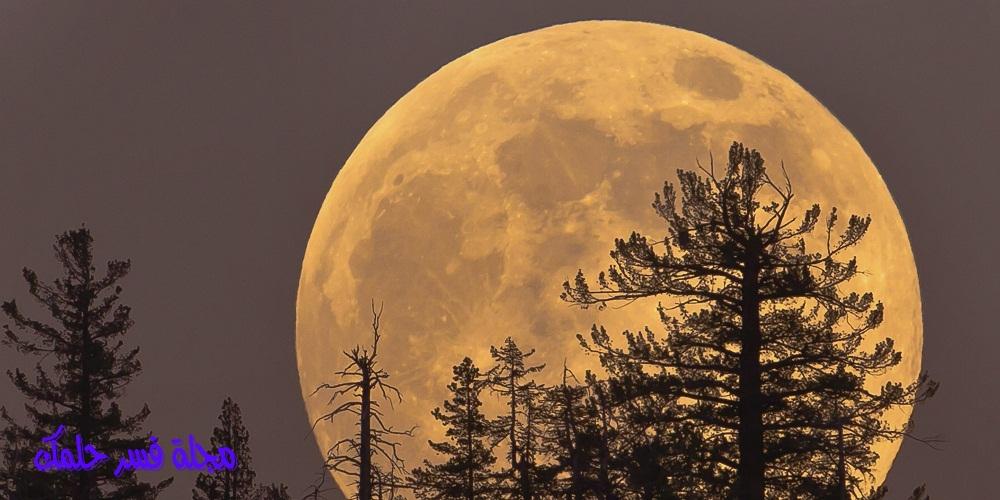 حلم القمر للمرأة المتزوجة والعزباء في المنام لابن سيرين
