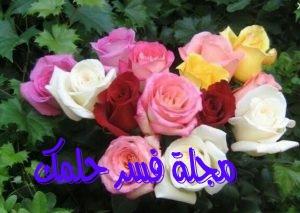 تفسير حلم الورود في المنام للرجل والمرأة المتزوجة والعزباء احلامي دوت نت