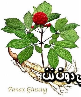 هذا النبات يحمي من سرطان الثدي ويعالج عدة امور اخرى