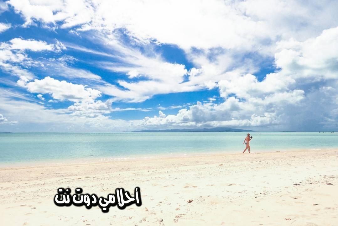 جزر أوكيناوا