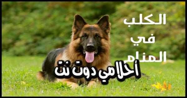 تفسير رؤية الكلب في المنام لابن سيرين