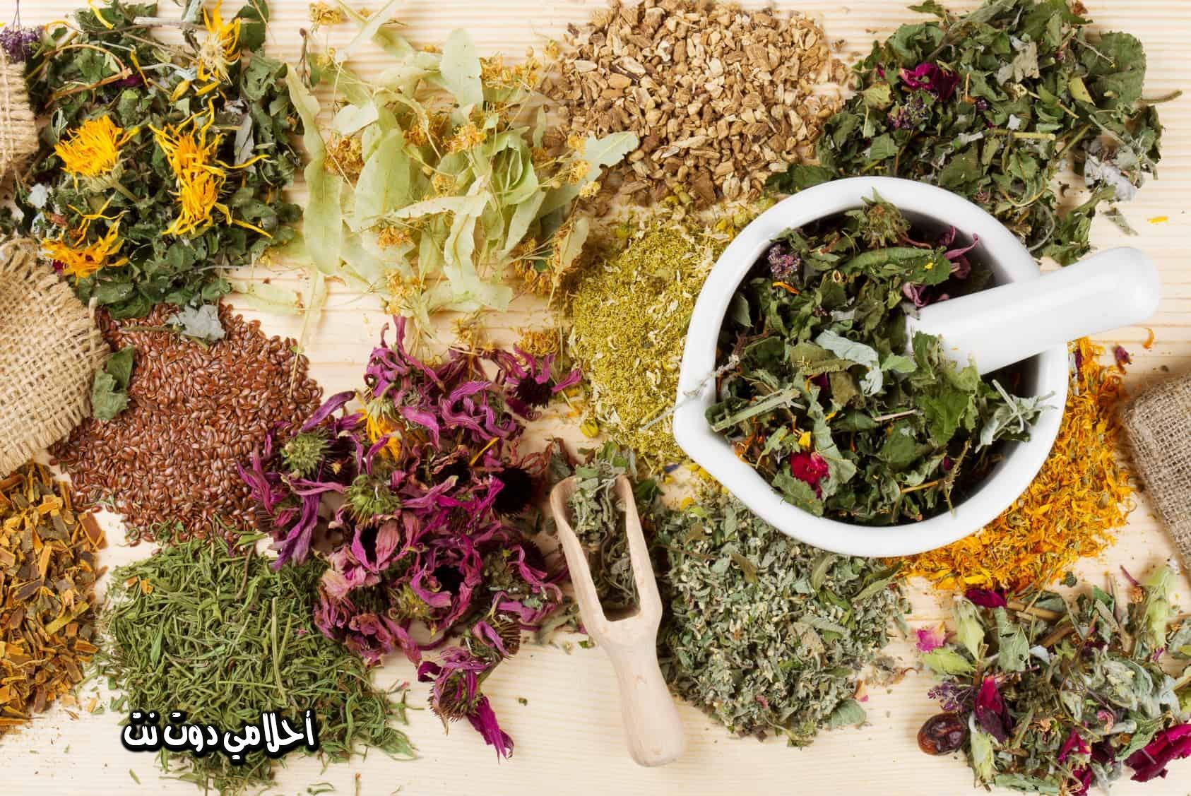 اعشاب مفيدة لمرض الزهايمر