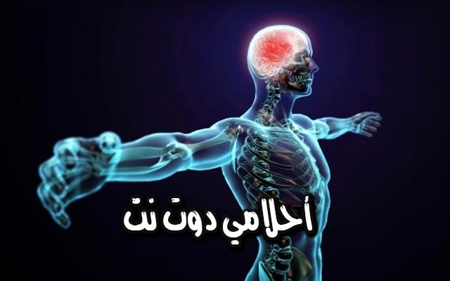 نبات يعمل على تحسين الجهاز العصبي تعرف عليه وكيف تستخدمه اسافويتيدا عسافيتيدا غراس