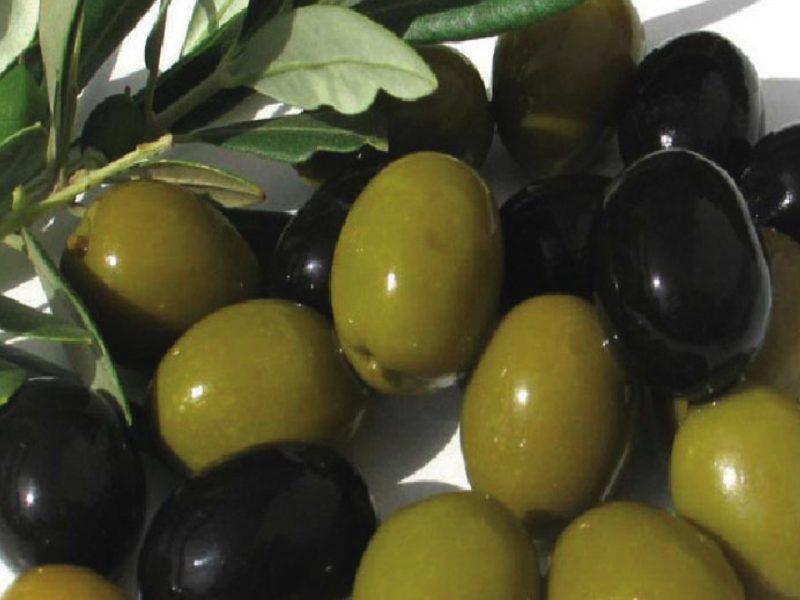 تفسير رؤية ثمار الزيتون في المنام