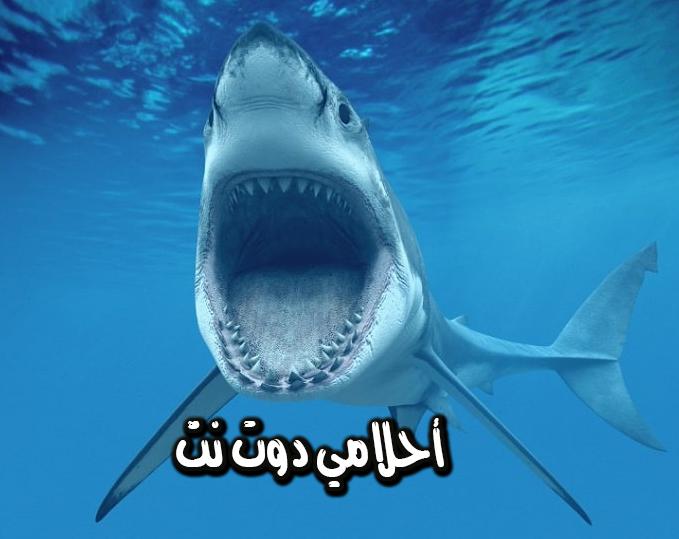 تفسير حلم سمك القرش في المنام للامام الصادق