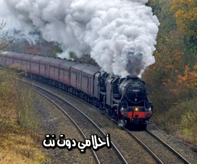 تفسير حلم القطار
