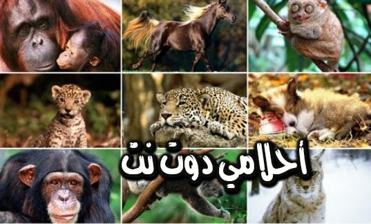 الحيوانات البرية في المنام