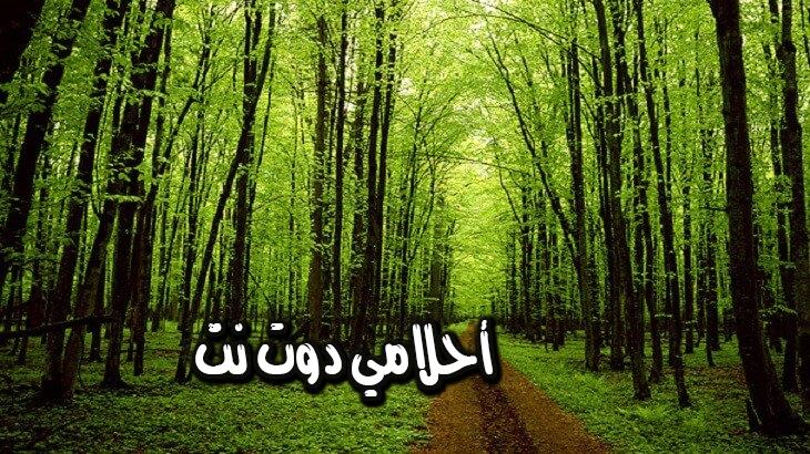 معنى الأشجار في المنام