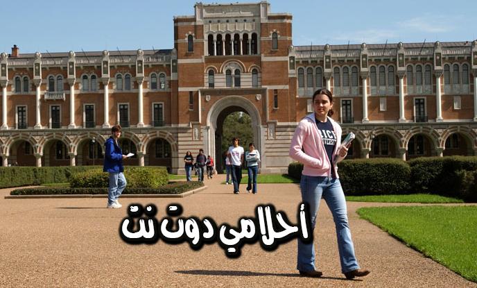 رؤية جامعة في المنام