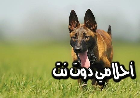 تفسير رؤية الكلب في المنام