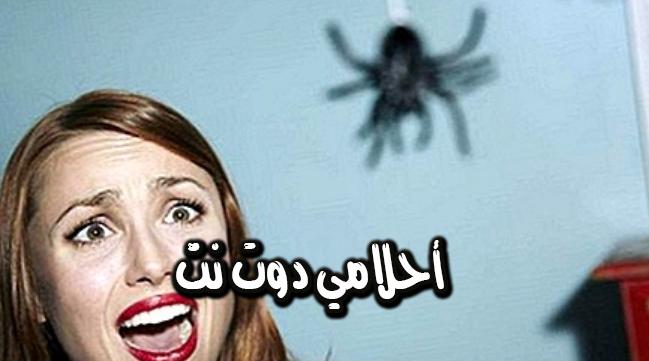 هجوم العناكب في المنام
