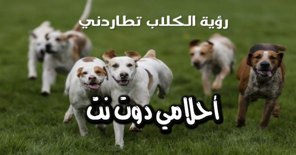 تفسير حلم مطاردة الكلاب في المنام لابن سيرين تفسير حلم رؤية الكلب كلب يطاردني في الحلم