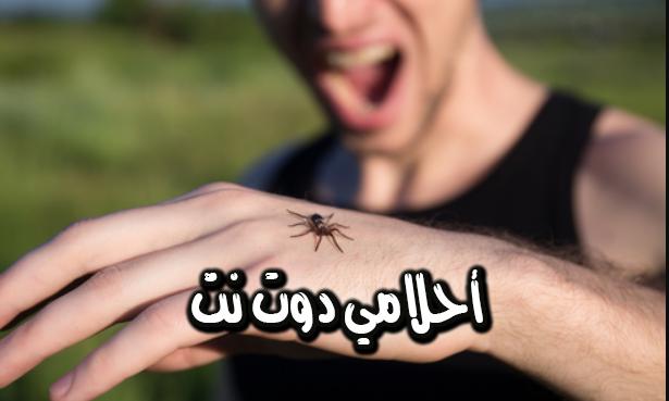 تفسير رؤية العنكبوت في الحلم للامام الصادق – عض العنكبوت لك في المنام