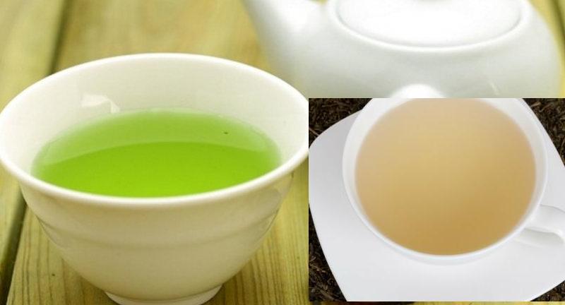 الفرق بين الشاي الأبيض والشاي الأخضر
