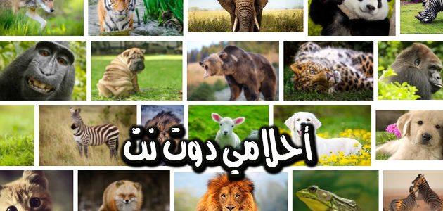 تفسير رؤية الحيوانات في المنام