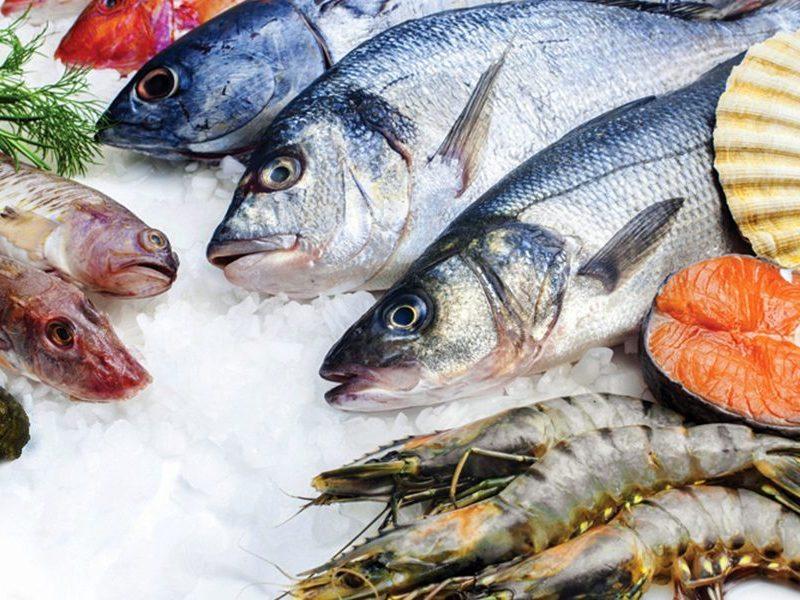 تفسير رؤية الأسماك النيئة في المنام