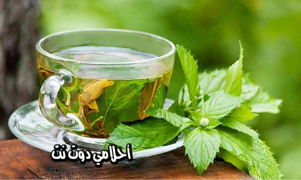فوائد مذهلة من شاي النعناع