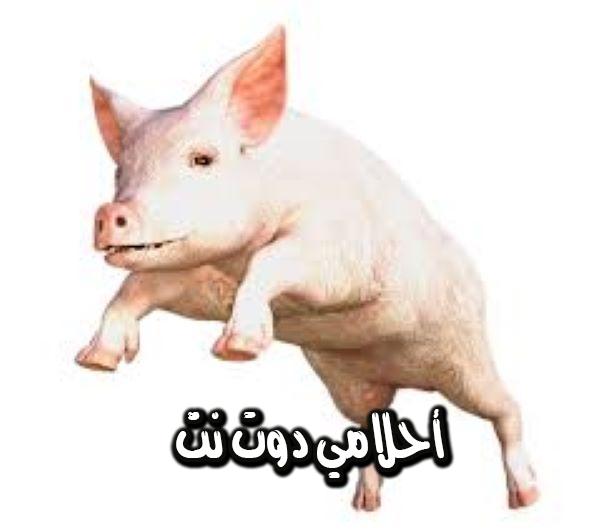 تفسير حلم الخنزير في المنام للرجل والمرأة المتزوجة والحامل والعزباء