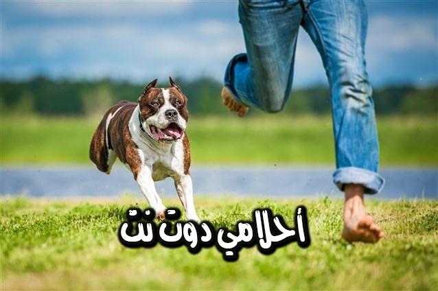 تفسير رؤيه الهروب من الكلاب في الحلم للبنت العزباء وللمتزوجه