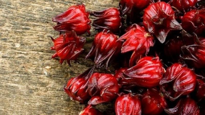 فوائد أوراق الكركديه – الفوائد الصحية لشاي الكركديه