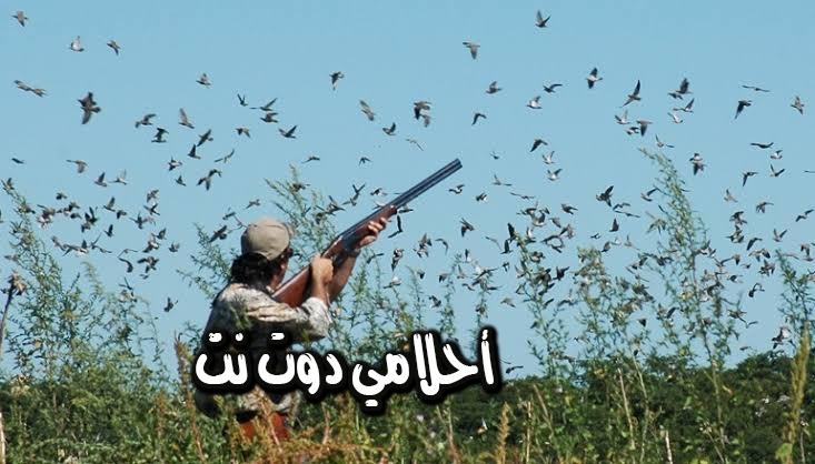 رؤية بندقية الصيد في المنام