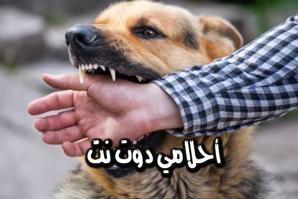 تفسير رؤية عضة الكلب في المنام لأبن سيرين بالتفصيل