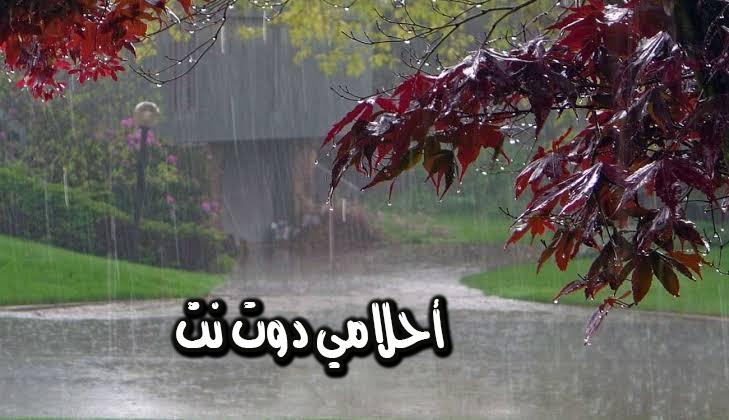 تفسير حلم المطر في المنام ودلالاته للعالم ابن سيرين