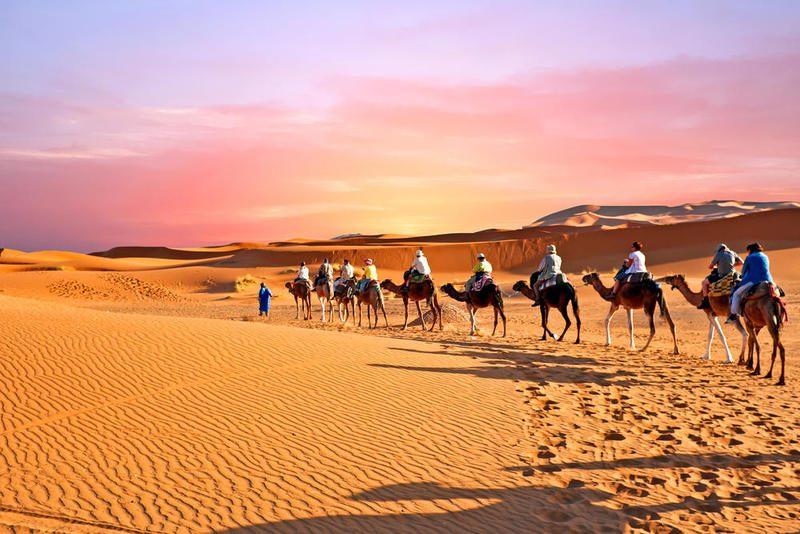 تفسير رؤية الصحراء في المنام لابن سيرين وابن شاهين
