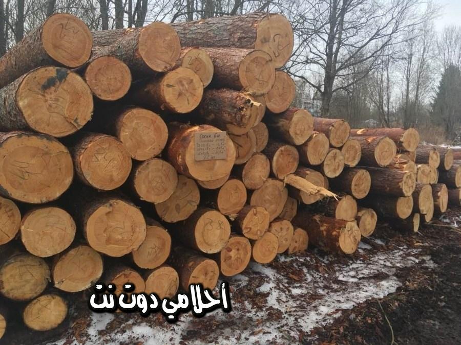 تفسير رؤية الحطب أو الخشب في المنام - رؤية حرق الحطب في المنام - رؤية الخشب المسوس بالمنام