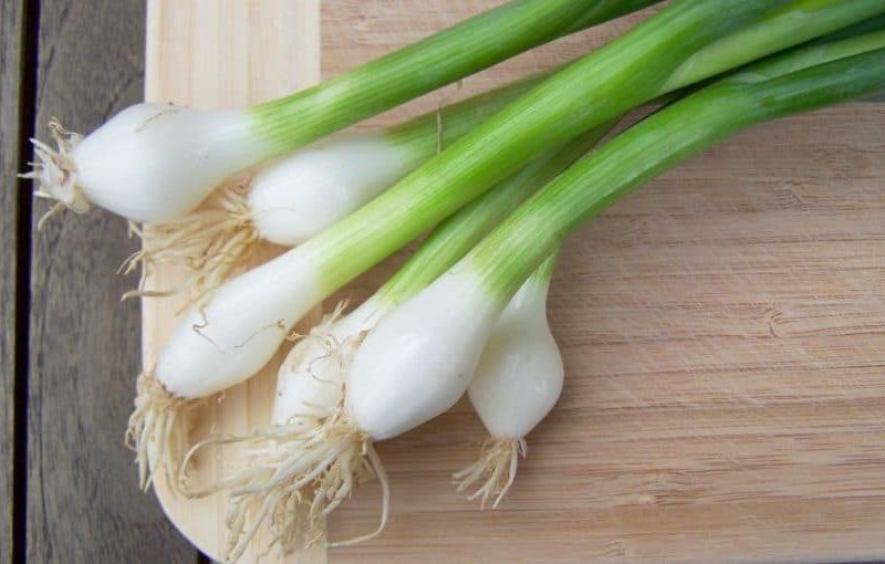 تفسير رؤية زراعة البصل الأخضر في المنام