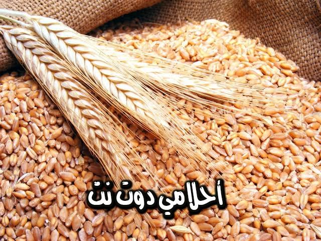 تفسير رؤية حبوب القمح في المنام