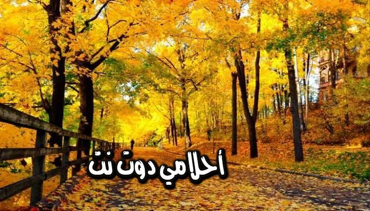 تفسير رؤية فصل الخريف في المنام