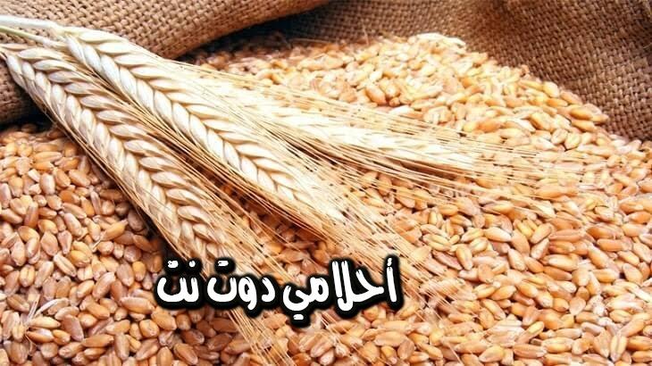 تفسير رؤية سنابل القمح في المنام