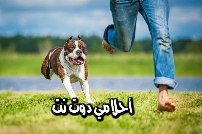 تفسير رؤية الفرار من الكلاب في المنام