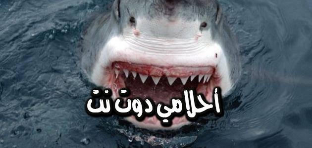 تفسير رؤية سمك القرش في المنام