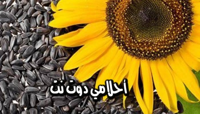 تفسير رؤية بذور نبات عباد الشمس في المنام