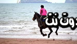 تفسير رؤية ركوب الخيل في المنام - حلمت اني سقطت عن الحصان بالمنام - رؤية الطيران بالخيل بالمنام